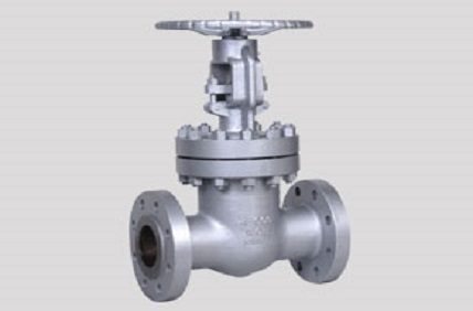 Stainless Steel UNS S31000 Valves
